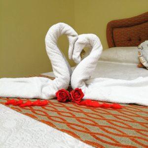 decoraciones, doble, naranja, cama, amor, Habitación Doble